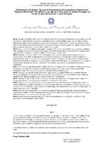 Decreto Direttoriale MIUR 10/10/2008
